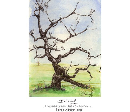 Twisty Tree - Central Coast NSW Artist Belinda Lindhardt- Prints & Cards for Sale