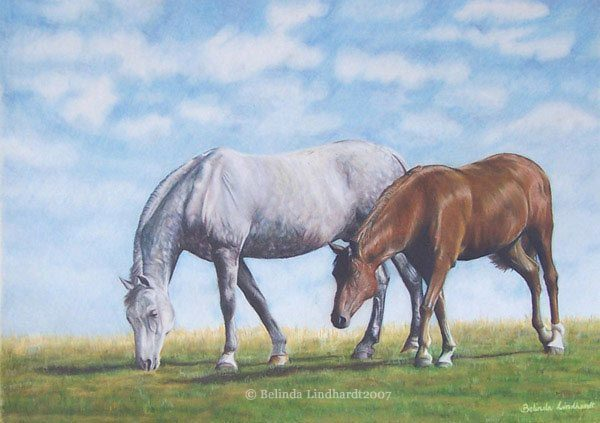 Best Buddies - Coloured Pencil Artwork by Australian Artist Belinda Lindhardt