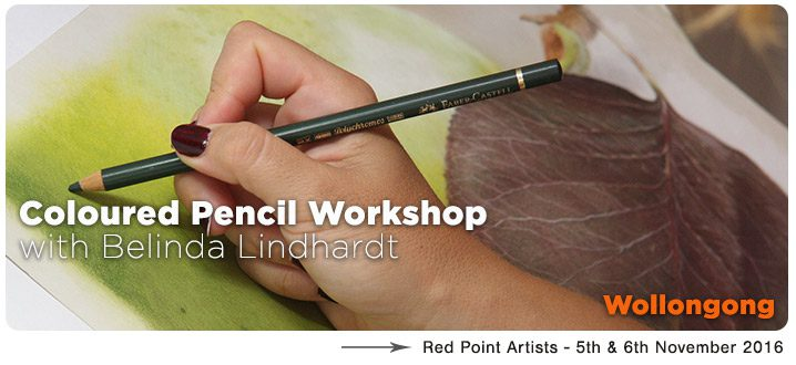 Coloured Pencil Workshop - Wollongong