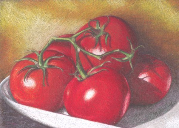 Lovely Tomatoes - Coloured Pencil Artwork by Australian Artist Belinda Lindhardt
