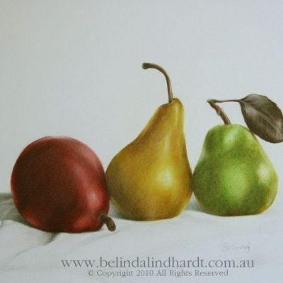 Realism Artwork of 3 pears - Original Art for Sale by Belinda Lindhardt