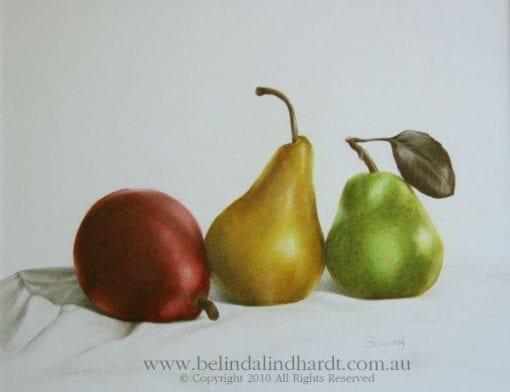 Realism Artwork of 3 pears - Original Art for Sale by Belinda Lindhardt
