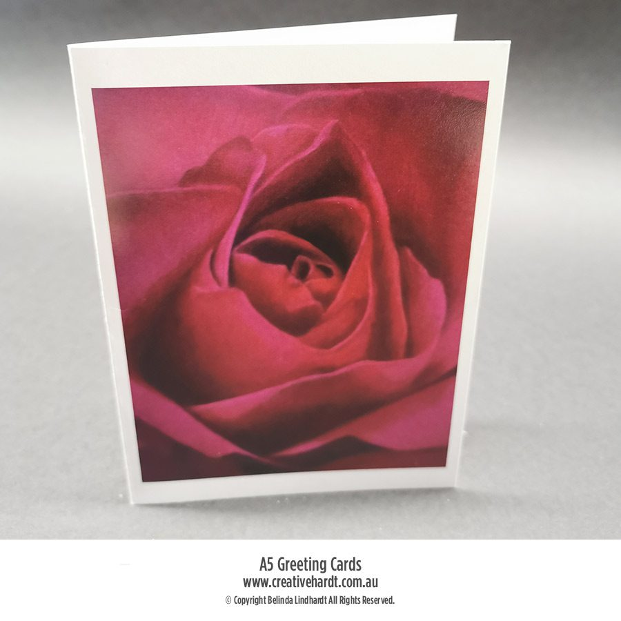 Art Greeting Cards - Deep Pink Rose by Australian Artist Belinda Lindhardt