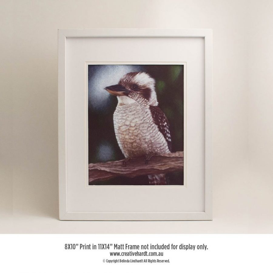 Art Prints for sale - Kookaburra - in Frame
