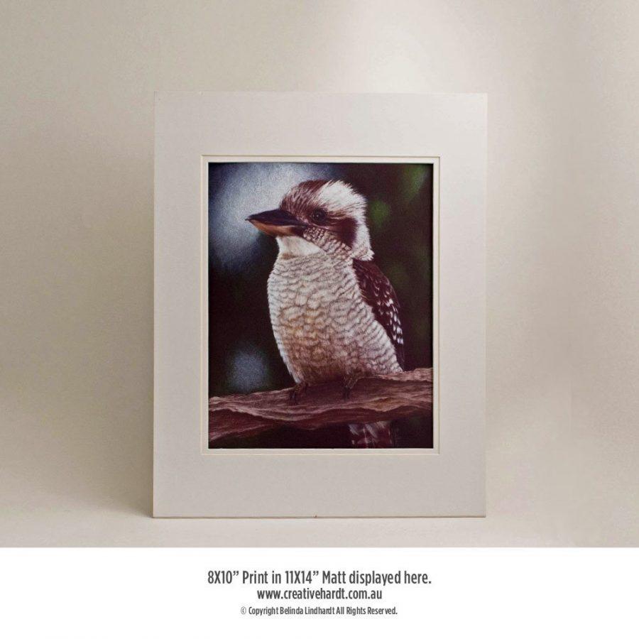 Art Prints for sale - Kookaburra - with Matt