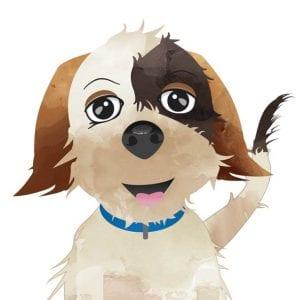 Character Illustration - Dog