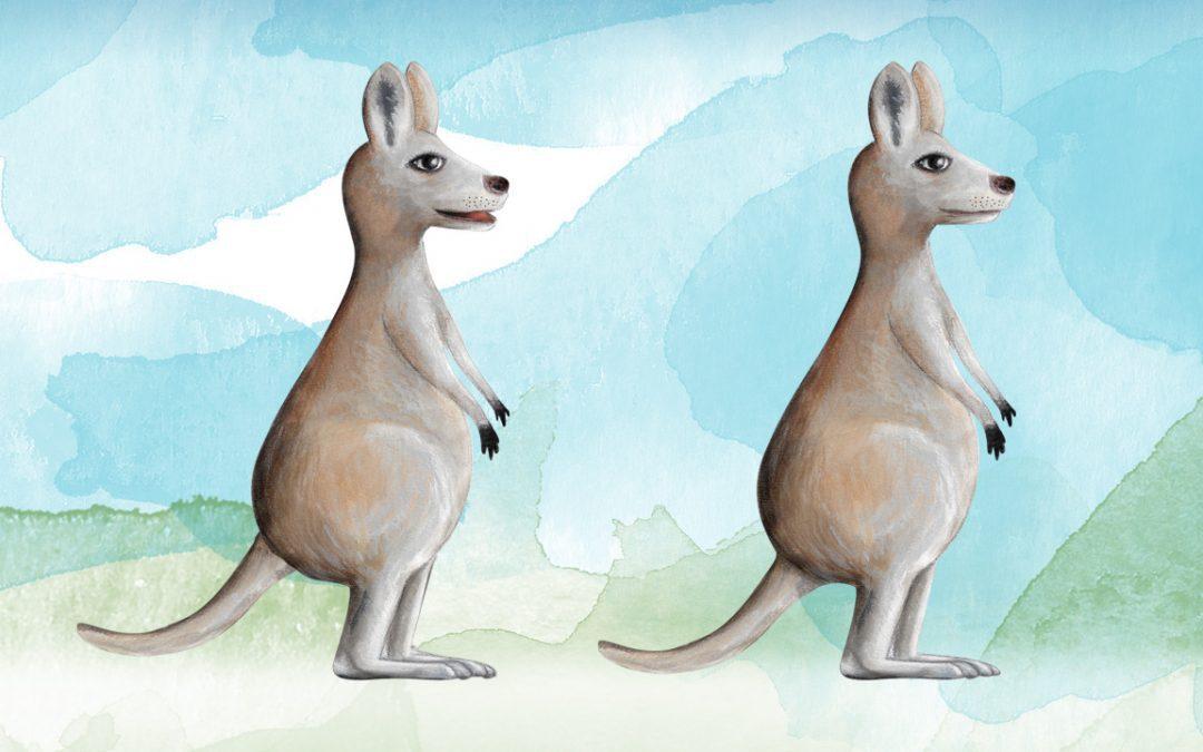 Illustration, Animation Australia - Joey Kangaroo - Belinda Lindhardt - Central Coast NSW, Sydney