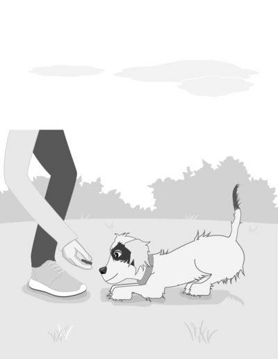 nosetotail-illustration-web6