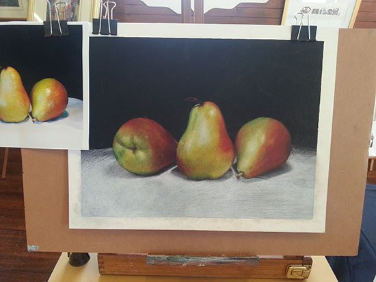 Coloured Pencil Demonstration - Central Coast, Sydney